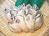 ぷりっぷりの国産 カキ2L 特大1kg 業務用 牡蠣 (かき)・カキ2L・