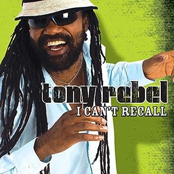 I Can't Recall (Single)