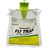 Natural Stink Bug Trap