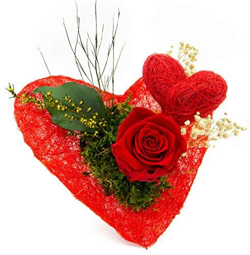 Pure Difference - Echte Konservierte Infinity Rose in Rot auf rotem Deko Herz zum aufstellen - Blumenstrauß mit Liebe handgefertigt - Ewig blühende Freude als Geschenk - Mind. 3 Jahre haltbar