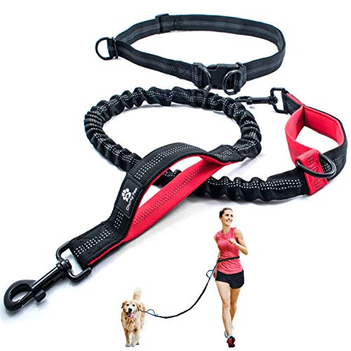 CHUNKY PAW Hands Free Dog Leash for Running, Walking, Hiking,Training, Jogging for Medium and Large Dogs up to 150 lbs, Durable Dual Handle Waist Leash with Reflective Bungee and Adjustable Waist Belt
