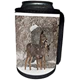 3dRose Danita Delimont - Deer - Two Mule Deer standing in Mount Olivet Cemetery, Salt Lake City, Utah. - Can Cooler Bottle Wrap (cc_209743_1)