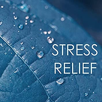 Stress Relief - The Best Relaxation Music Collection