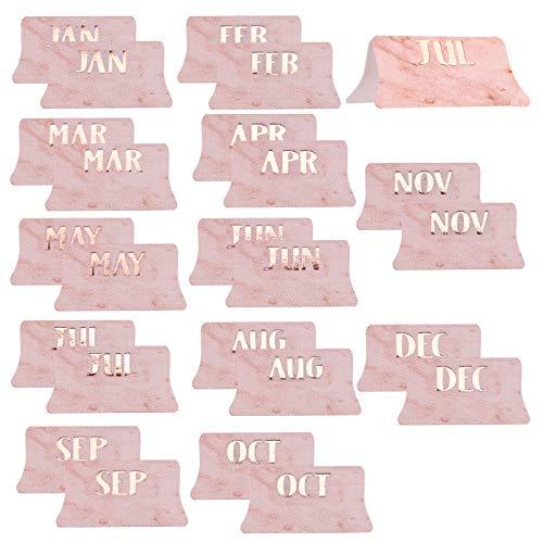 AIEX 24 Pegatinas de Calendario con Pestañas Mensuales, Pestañas de Indice Adhesivas para Planificadores, Diarios, Cuadernos, Agendas (Rosa)