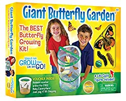 Image: Insect Lore Giant Butterfly Kit: Deluxe 18 inch Habitat, Voucher For 5 Caterpillars, Butterfly Play Set