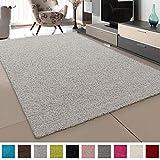SANAT Teppich Wohnzimmer - Creme Hochflor Langflor Teppiche Modern, Größe: 60x110 cm