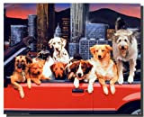 Funny Dogs Wall Decor Animal Picture Kids Room Art Print Poster (16x20)