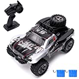 RC Cars 2.4Ghz All Terrain High Speed Racing Car 1:18 Scale Off-Road Vehicle Buggy Toy Car,Remote Control Car for Kids Birthday (2pce Battery)