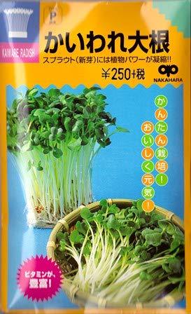 かいわれ大根 中原採種場のスプラウト用種です