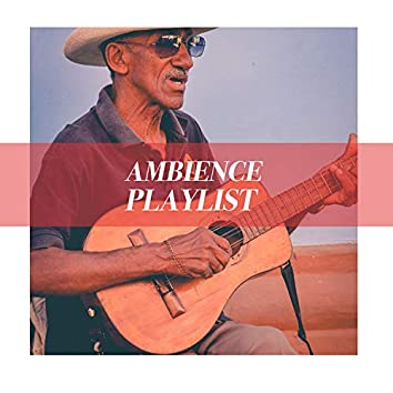Romantic Fingerpicking Ambience Playlist