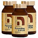 NatureMedic Fucoidan 3-Plus Brown Seaweed Immunity Supplement with Three Types of High Purity Fucoidan Organic Mekabu Fucus Mozuku Agaricus 160 Vegetable Capsules Made in Japan (3 Bottles)