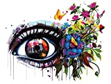 NA/ Pintar por números Ojos parlantes DIY Pintura al óleo pintadas a Mano Pintura preimpreso Lienzo Pintura acrílica Set Adulto Principiante Pintura hogar decoración 40x50cm sin Marco
