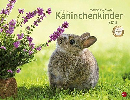 Kaninchenkinder Posterkalender - Kalender 2018