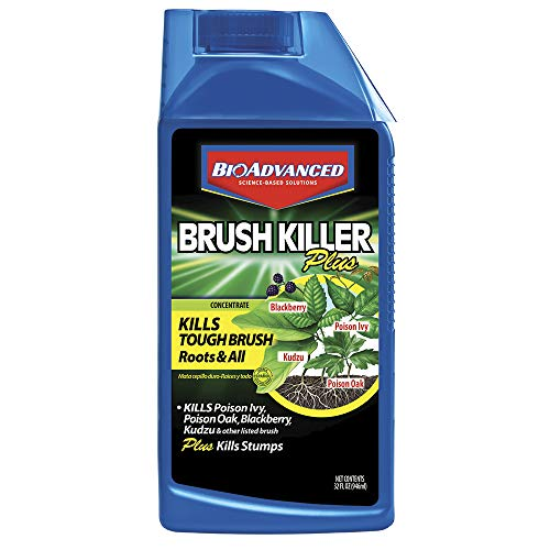 BioAdvanced 704640B 704640 Brush Killer