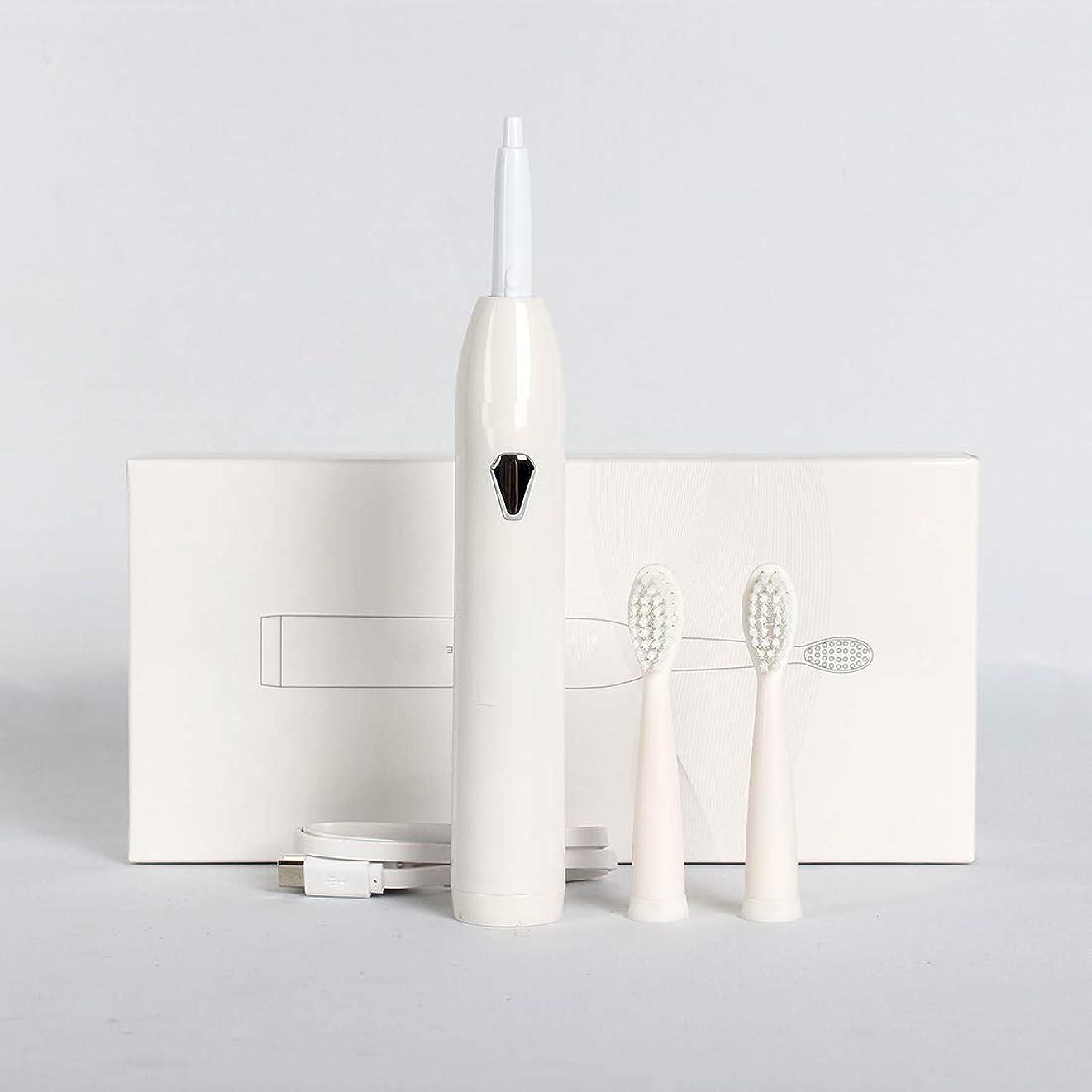 文庫本名前懲らしめ充電式電動歯ブラシ、PA + ABS 2交換用ヘッド急速充電ポータブルソニック歯ブラシ4オプションモード