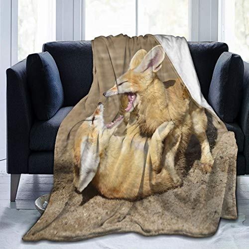 June flower Fleecedecke 127 x 152,4 cm – Animal Fennec Games Zhivotnye Flanell-Fleece-Decke für Bett/Couch/Sofa/Büro/Camping