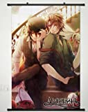 Wall Scroll Poster Fabric Painting For Anime Amnesia Shin & Toma 001 L