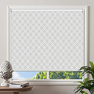 PASSENGER PIGEON Blackout Window Shades, Premium UV Protection Water Proof Custom Roller Blinds, Printed Picture Window Roller Shade, 43