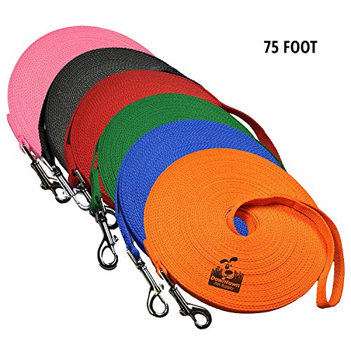 Dog/Puppy Obedience Recall Training Agility Lead Leash - Perfect for Pet Behavior Training, Multiple Sizes (75 ft, Orange)