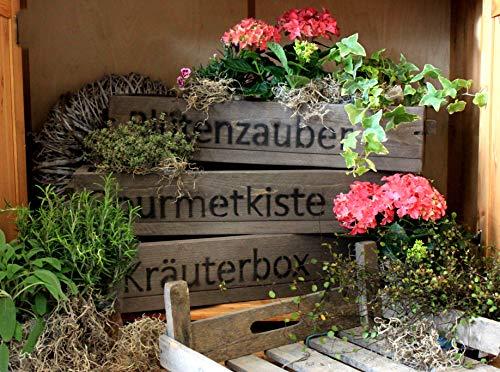 dekorie Blumenkasten Pflanzkasten Massivholz Pflanzkiste Aufbewahrungskiste braun mit Druck (Kräuterbox)