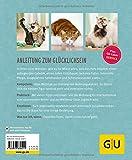 Wohnungskatzen: Wohlfühl-Basics für kleine Tiger - 2