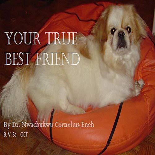 Your True Best Friend audiobook cover art