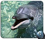 Yanteng Alfombrilla de ráton juguetona Lisa Linda del Modelo del delfín, Alfombrilla de ráton Impresa cómoda del Ordenador de Goma Antideslizante Impresa