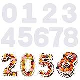 savita 9 pezzi 31 cm 0-8 numero stencil torta, modelli piatti in plastica numero stampo torta taglio stencil per fai da te natale matrimonio compleanno anniversario torte biscotto