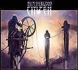 Songtexte von Billy Sherwood - Citizen