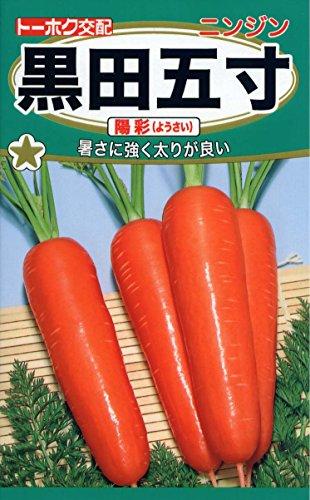 株式会社トーホク ニンジン 黒田五寸 陽彩 02561
