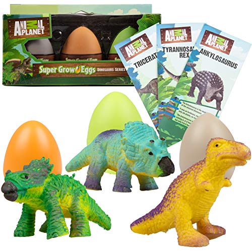 Animal Planet Super Grow Dinosaur Eggs 3 Pack - Toys Hatch and Grow to 3X Size in Water - T-Rex, Triceratops, & Ankylosaurus - Includes Dino Educational Fact Cards