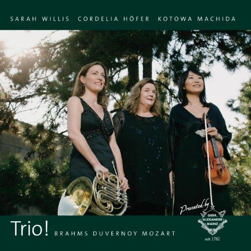Trio für Klavier, Violine und Horn, Eb-Dur, KV 386c: I. Allegro