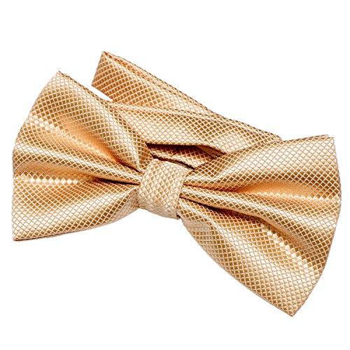 DonDon papillon da uomo 12 x 6 cm già legato e infinitamente regolabile - oro