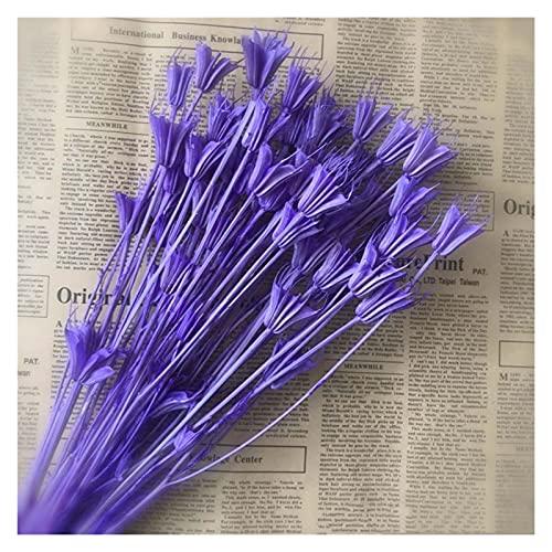 HHH Ponad 50 głowic kwiatów, suszone naturalne kwiaty gałęzi,MAJSTERKOWANIE Suche gwiazdkowe anyż bukiet kwiatowy dla wystroju domu, aranżacji kwiatowej HHH (Color : 05)