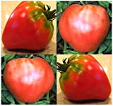 20 German Red Strawberry Tomato Seeds Heirloom Big Texas Strawberry ~Solid Meat