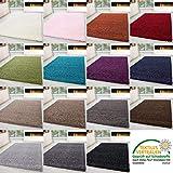 HomebyHome Shaggy Alfombra Pelo Largo pequeño Extra Grande Grueso Suave salón Unicolor, Color:Beige, tamaño:200x290 cm