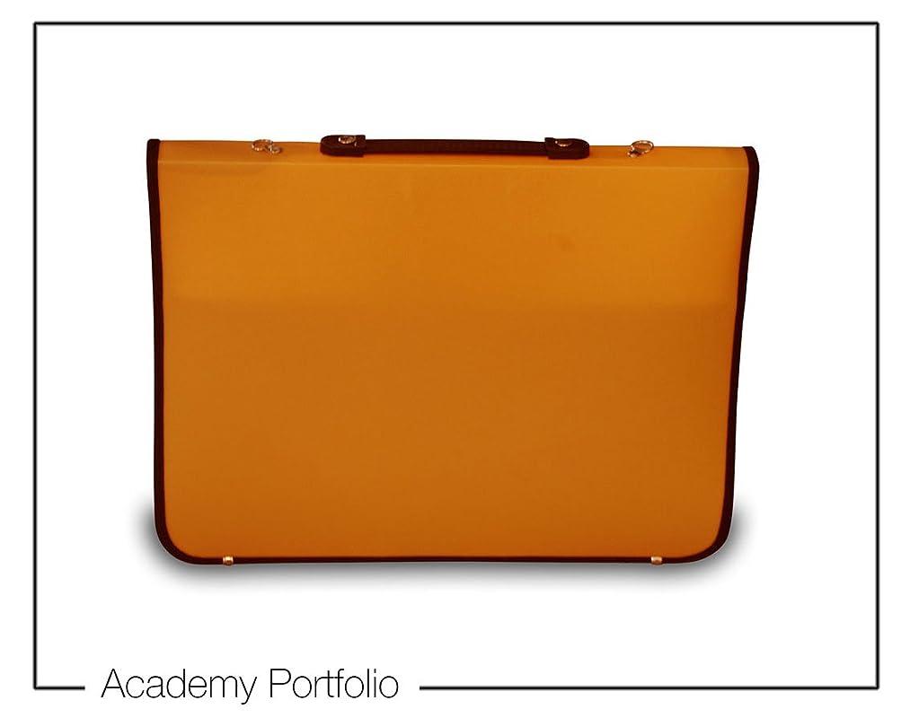 Artcare 15211310 36 X 4 X 28.5 Cm A4 Synthetic Material Academy Portfolio, Orange