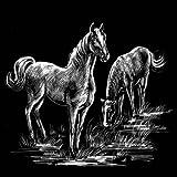 "WASO-Hobby - 4er Scrapy Kratzbilder Set - Wildpferde Motive / Silber ""Postkartenformat"" -"