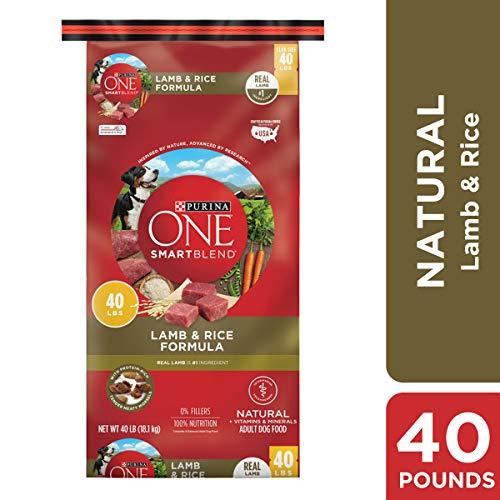 Purina ONE SmartBlend Natural Formula dog food for Golden Retrievers