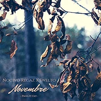 Novembre (feat. Swelto & DJ Exy)