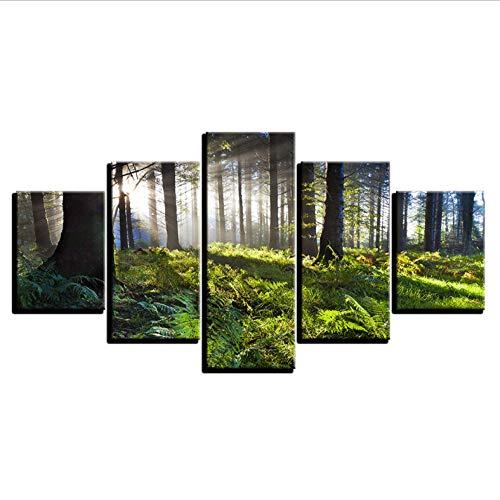 PrintWUHUA Wohnzimmer Bilder Modern Wanddekoration Sonnenschein Grüner Forest Natural Landscape 5 Teilig Wandbild Gerahmt (W) 100CMX(H) 55CM
