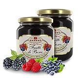 Compota de Frutos del Bosque Sin Azúcares Añadidos - 390 Gramos