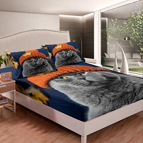 Feelyou Cat Bed Sheets Cute Gray Cat Bed Sheet Set for Kids Boys Girls Funny British Shorthair Animal Theme Bedding Set 3D Cat Printed Design Fitted Sheet Room Decor 2Pcs TwinXL Size,Zipper