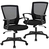 Office Chair Desk Chair Computer Chair Swivel Rolling Executive Lumbar Support Task Mesh Chair Metal Base for Women Men, 2 Pack