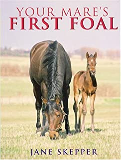 mares first foal