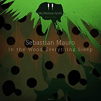 In the Wood Everything Sleep