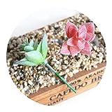 Mini Plantas suculentas Artificiales de 3,5 x 6 cm, Plantas suculentas Artificiales, Flores de arreglo de Paisaje, para decoración del hogar, jardín, Boda, Rojo, Una Talla