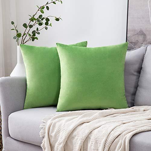 MIULEE Confezione da 2 Federe in Velluto Copricuscini Decorativi Fodere Quadrate per Cuscino per Divano Camera da Letto Casa45X45cm Erba Verde
