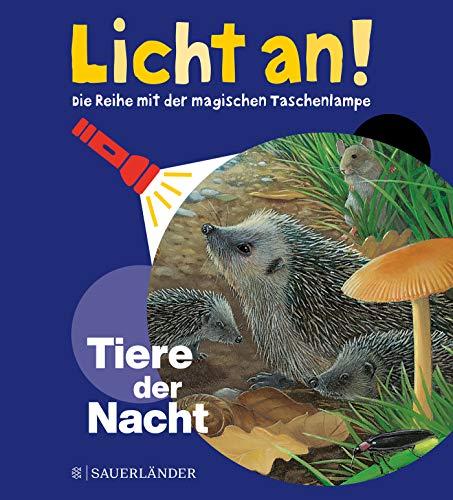 Tiere der Nacht: Licht an! (Licht an! Die Reihe mit der magischen Taschenlampe, Band 5)