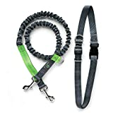 Mighty Paw Hands Free Dog Leash with Extra Length, Premium Running Dog...